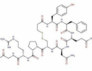 Vasopressine