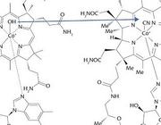 Hydroxocobalamine